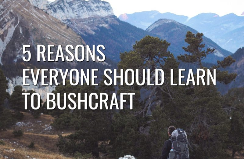 5 Reasons Everyone Should Learn to Bushcraft