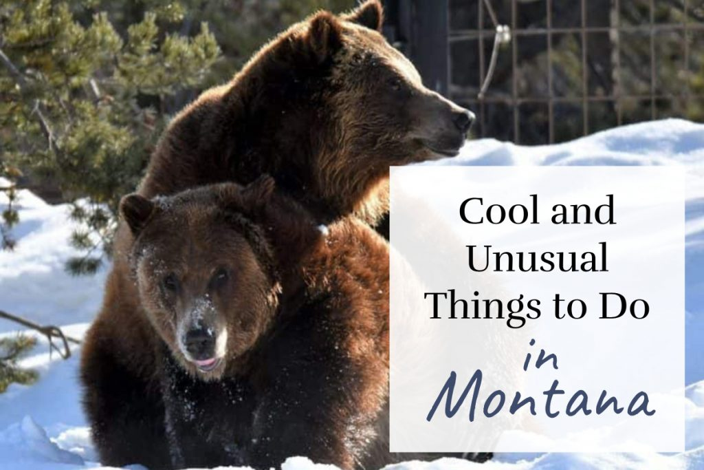 7 Cool and Unusual Things to Do in Montana